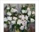 """""""听海归来-康新莲、肖嘉伟、蔡晓霞赴中国美院学习汇报展""""之蔡晓霞作品展"""