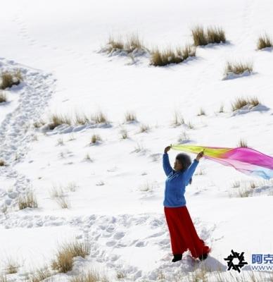 温宿野驴大坂初冬雪景观光留影